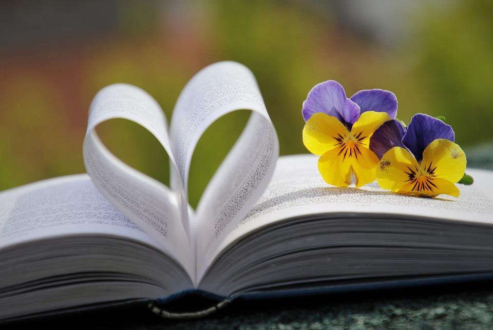 book-6214216_960_720